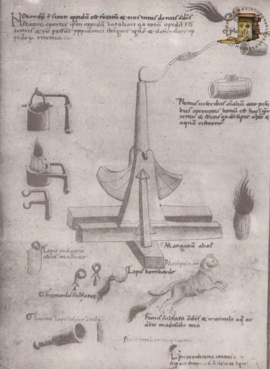 Codex latinus parisinus 7239 (22v)