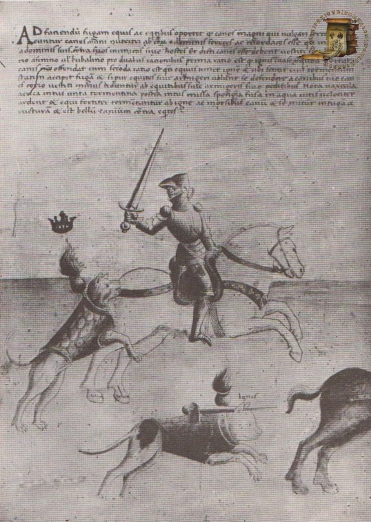 Codex latinus parisinus 7239 (61r)