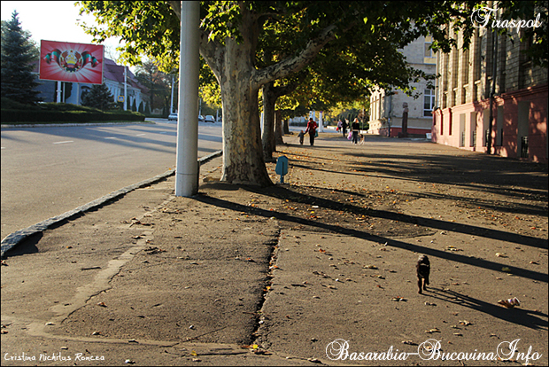 22 Pisica neagra la Tiraspol 2012 - foto Cristina Nichitus Roncea - Basarabia-Bucovina.Info