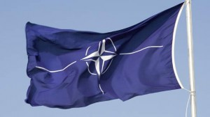 steagul-NATO