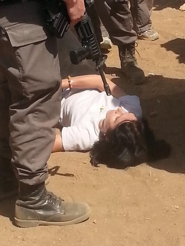 Marion Fesneau Castaing, diplomat francez, țintuită la pământ sub amenințarea armelor