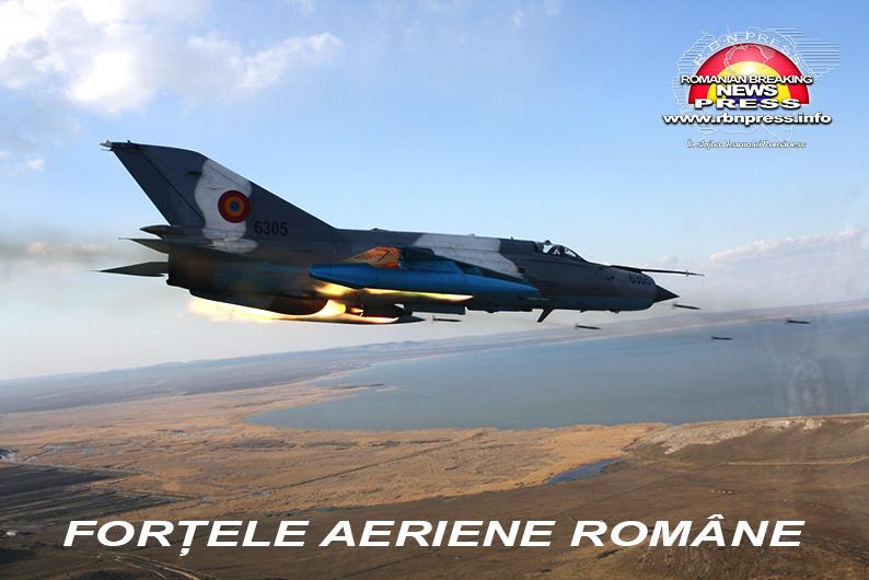 armata romana forte terestre si aeriene (12)