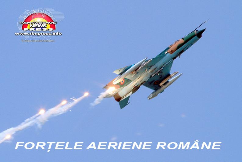 armata romana forte terestre si aeriene (14)