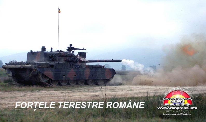 armata romana forte terestre si aeriene (27)