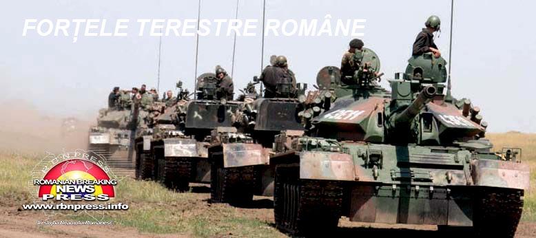 armata romana forte terestre si aeriene (33)