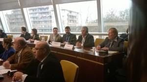 Senatorul Viorel Badea La sedinta Comisiei politice din cadrul Consiliului Europei