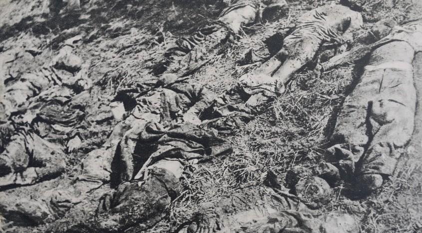 """Nordul Bucovinei, iunie 1940… Măcelul din comuna Suceveni (…) """"Pe uliţi şi pe şosea – numai o dâră de sânge, iar roţile camioanelor încărcate cu morţi şi răniţi erau toate roşii de atâta jertfă românească…"""""""