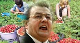 """Răspunsul """"Căpșunarilor din România"""", revoltați de pamfletul lui Vadim! Culegeri de poezii !"""