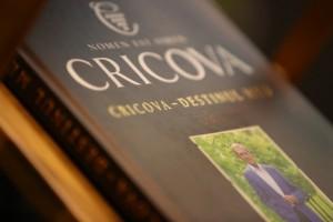 Istoria vinificației moldovenești