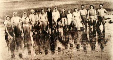 """17 spre 18 iunie 1951 """"Rusaliile negre""""! Peste 40.000 de persoane din 300 de localități din Timiș, Caraș-Severin și Mehedinți au fost deportați."""