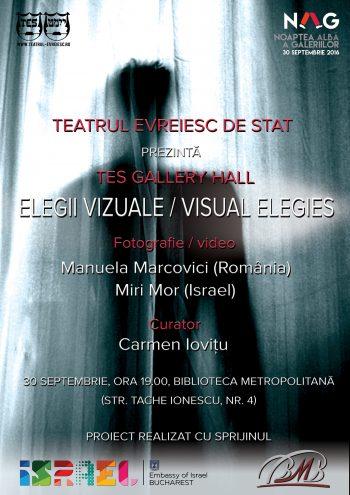 noaptea_galeriilor_teatrul_evreiesc_de_stat