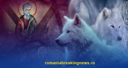 Este Ziua Sf. Andrei sau Debutul Anului Nou Dacic! Legenda Marelui Lup Alb și legătura tainică cu lupii a Sf. Andrei, patronul spiritual al românilor